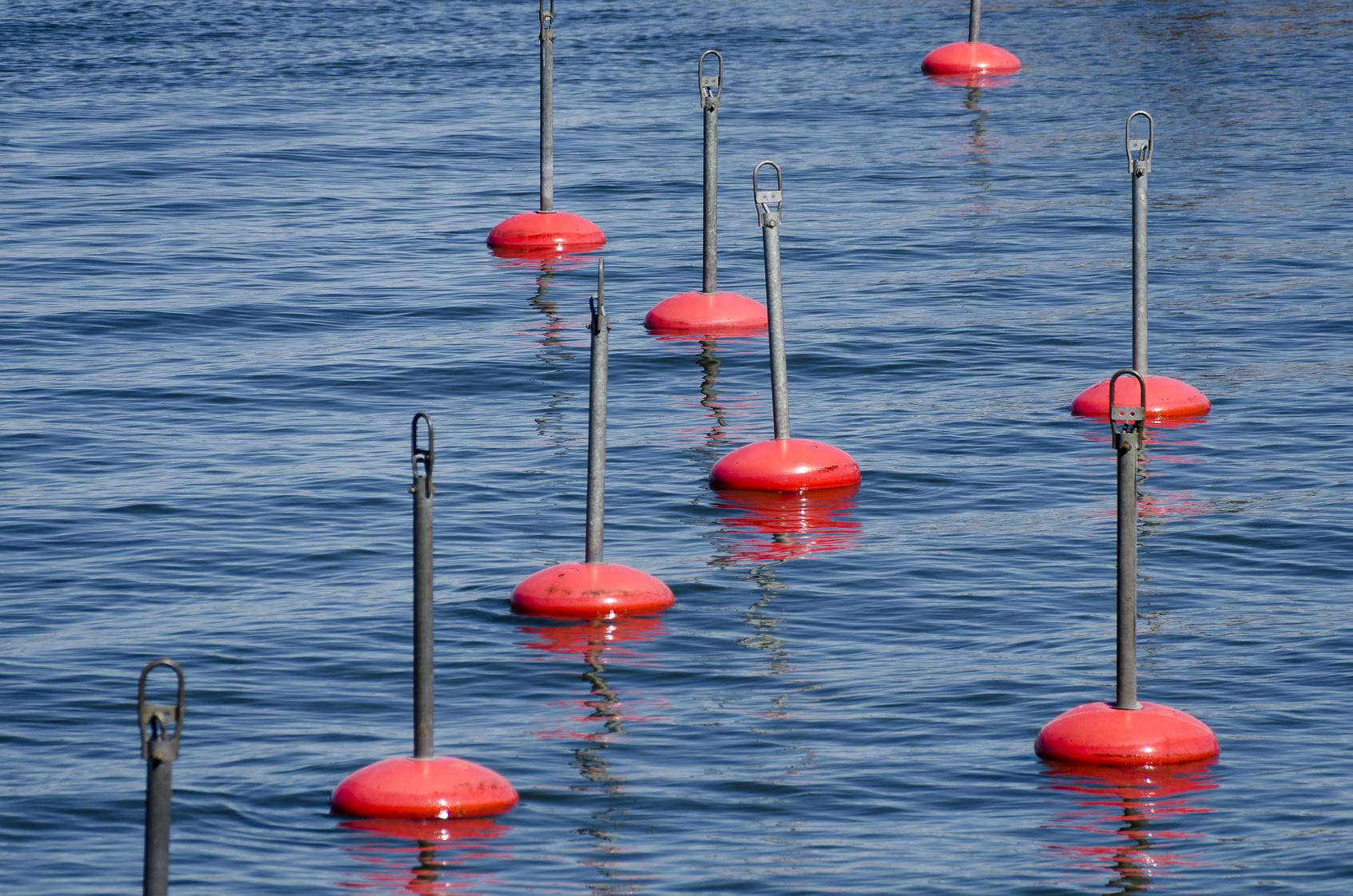 Bootsanleger mit roten Bojen schwimmen  auf blauem Wasser am Roxen, Schweden; boat mooring with red berthing buoys swimming on blue water at the lake Roxen, Sweden